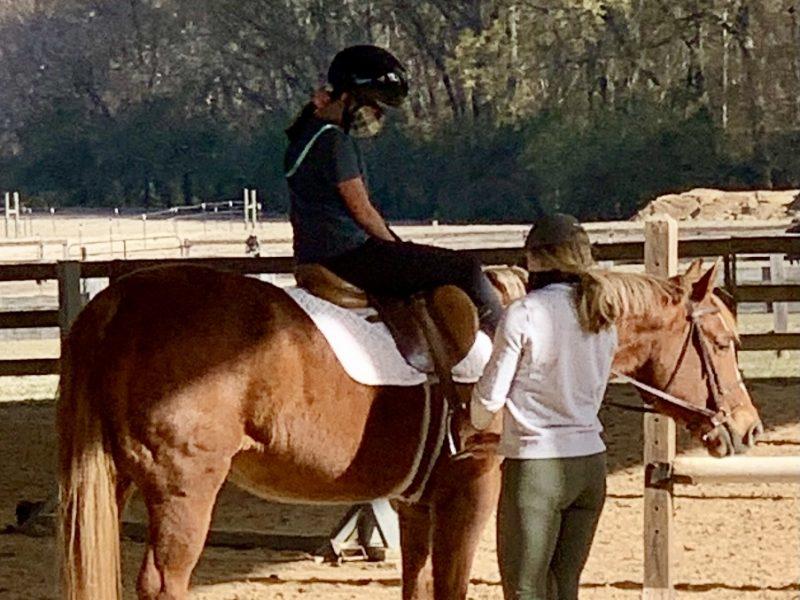 ~ Horseback Riding ~